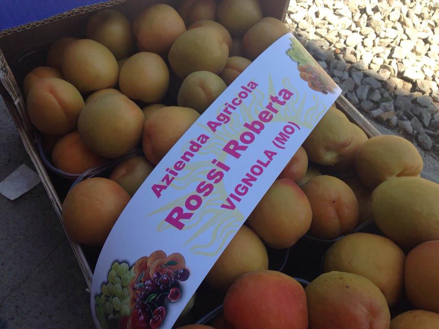 Calendario Maturazione Albicocche.Produzione E Vendita Frutta Di Qualita Albicocche